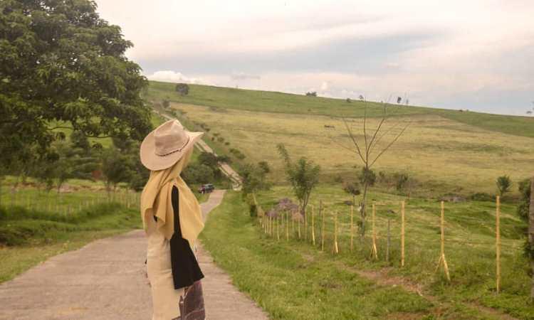 Kegiatan di Padang Mangateh