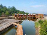 Wisata Alam Datuk, Wisata Kekinian Perpaduan Pantai & Hutan Mangrove di Batubara