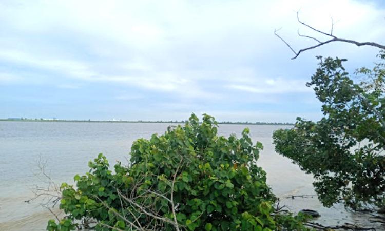 Daya Tarik Pulau Payung