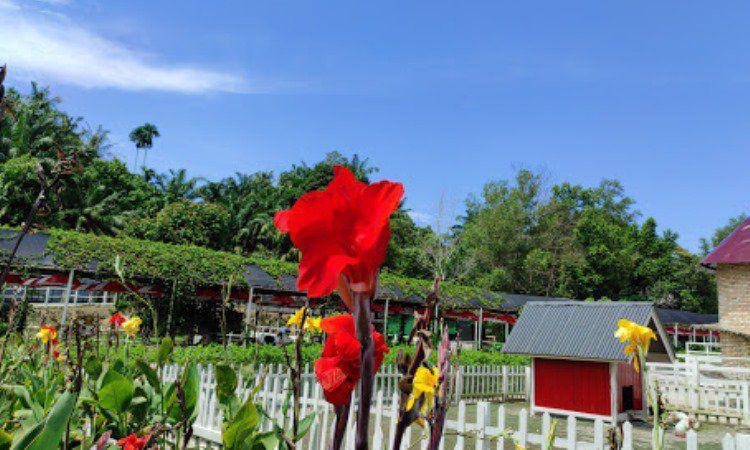 Fasilita Tersedia di Taman Alam Mayang